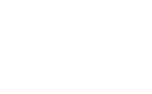 BIG WASH LOGO
